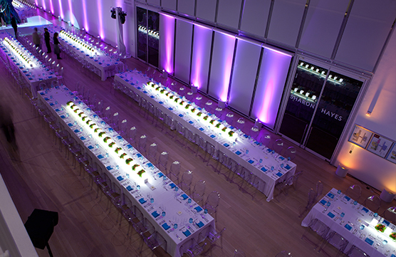 large-seated-dinner